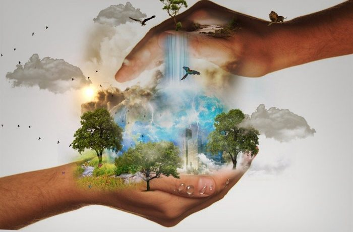 Omgeving: gebieden, gebouwen en energie