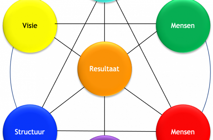 Strategie & organisatie